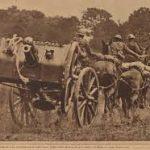 RHA 13 pounder field gun team (defence-force.blogspot.com)